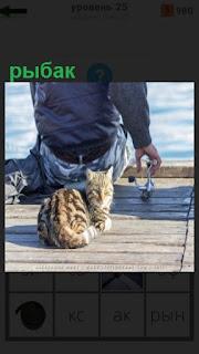 сидит рыбак и ловит рыбу, рядом находится кошка