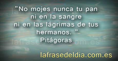 Citas  famosas de Pitágoras