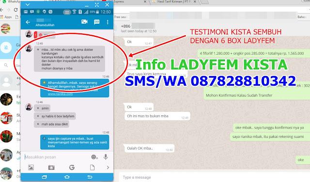 TESTIMONI KISTA SEMBUH DENGAN LADYFEM