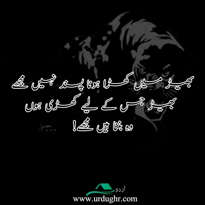 Attitude Quotes in Urdu