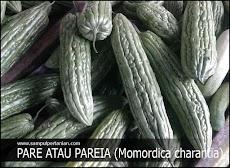 Pare atau Paria adalah sayuran yang pahit namun banyak manfaat