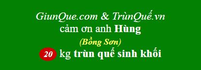 Trùn quế Bồng Sơn