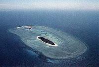 Коралов остров, Тихи океан