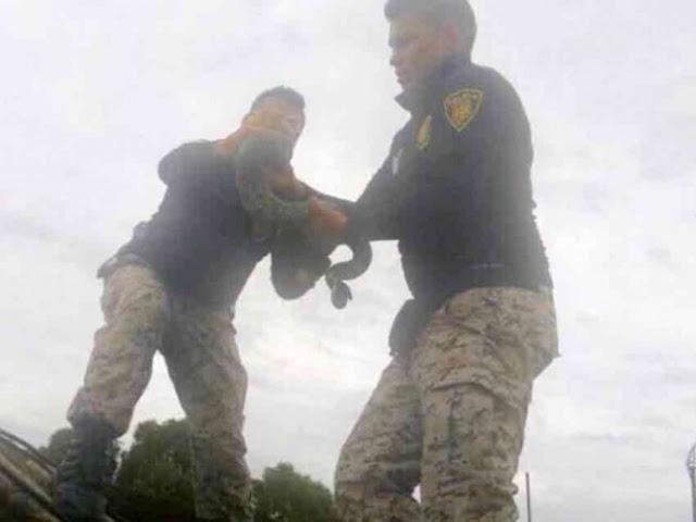 Despues de 3 semanas del terremoto, rescatan a serpiente atrapada entre inmuebles en la Narvarte