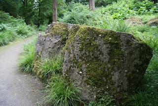 Ein großer Betonklotz liegt im Gestrüpp und ist von Moos überzogen