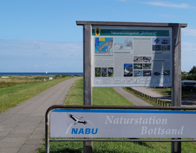 Der Strand von Wendtorf im Naturschutzgebiet Bottsand. Dort befindet sich auch die Naturstation Bottsand des NABU.