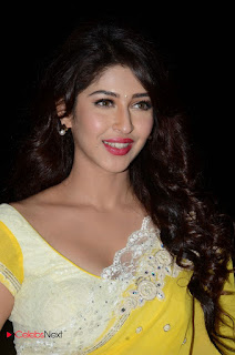 Sonarika Bhadoria Stills in Yellow Saree at Eedo Rakam Aado Rakam Gummadikaya Function ~ Bollywood and South Indian Cinema Actress Exclusive Picture Galleries