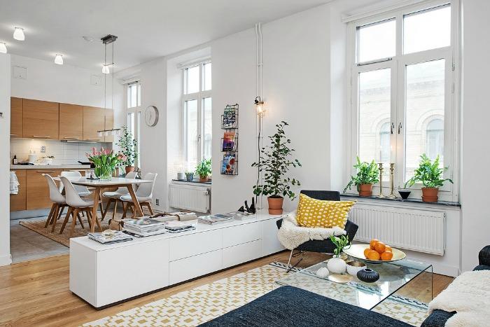 salón, comedor, cocina en un mismo espacio