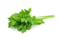 7 Raisons d'aimer cette herbe pour ses super pouvoirs sur la santé