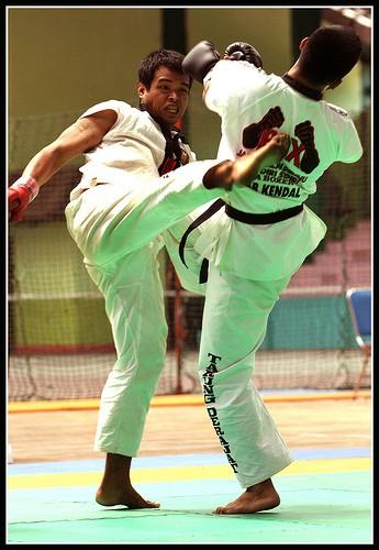 Martial Arts Tarung Derajat