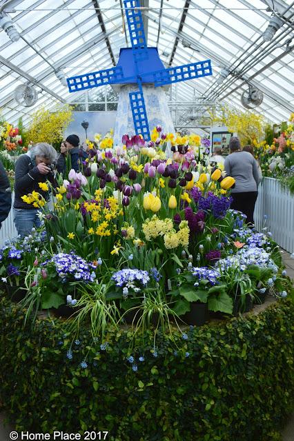 Botanical Garden at Smith College Spring Bulb Show - Windmill Centerpiece
