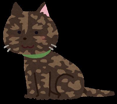 サビ猫のイラスト
