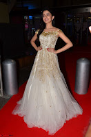 Rukshar Mir designer Anarkali Gown at 64th Jio Filmfare Awards South  2017 ~  Exclusive 041.JPG