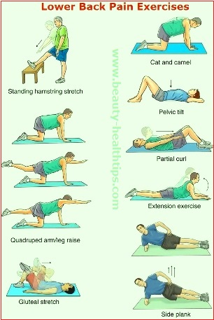 lower back pain causes and exercises
