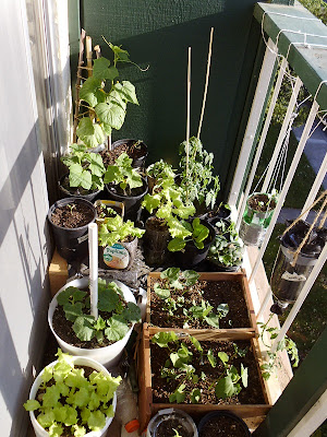 Left side balcony garden