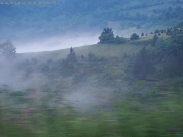 Zamglone góry Zlatibor w Serbii