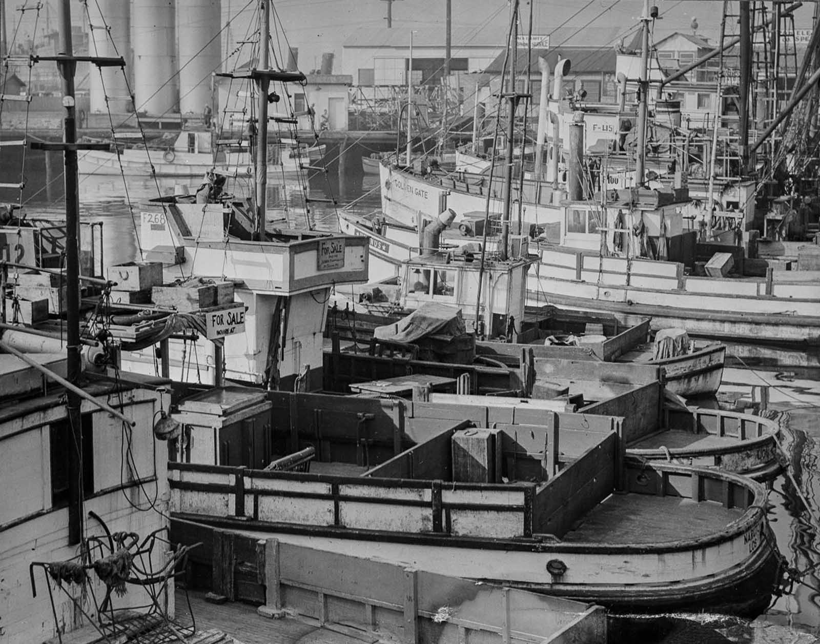 Japanese-American-owned fishing boats sit idle in Los Angeles harbor.