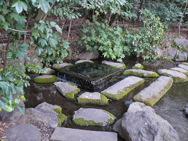 井の頭公園 神田川 源流