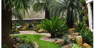 Galeri Taman - Tukang Taman Surabaya 98