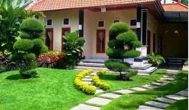 Taman dengan rumput