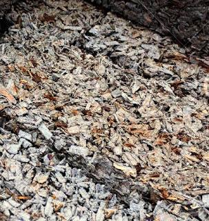 Sawdust in concrete