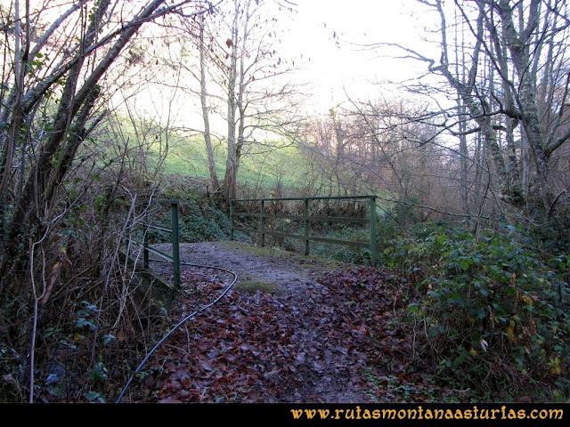 Ruta Tromeu y Braña Rebellón: Puente sobre el río
