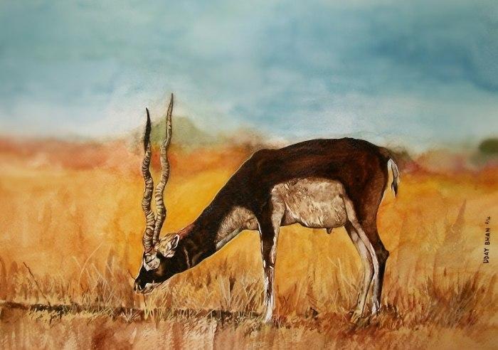 Индийский художник-самоучка. Uday Bhan