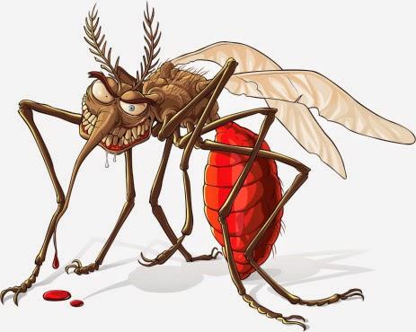 Kenapa Saya Benci Nyamuk?