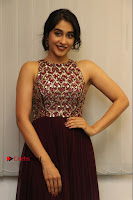 Actress Regina Candra Latest Stills in Maroon Long Dress at Saravanan Irukka Bayamaen Movie Success Meet .COM 0035.jpg