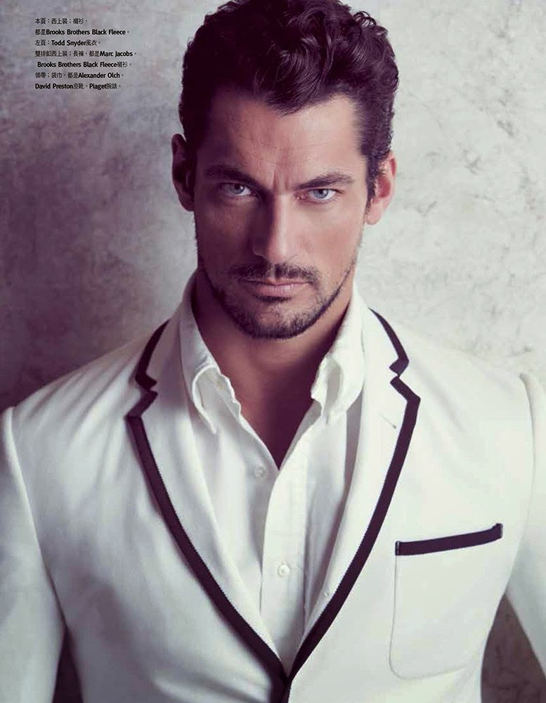 David Gandy, The Perfect Model