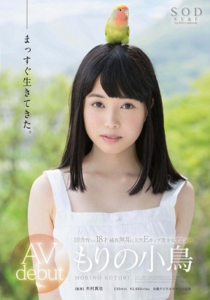 Bộ phim đầu tiên của em Kotori Morino nên xem [STAR-699 Kotori Morino]