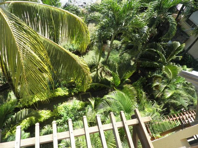 Jardin tropical de la Résidence Peramal