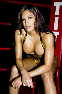 Melina Wwe Tits 70