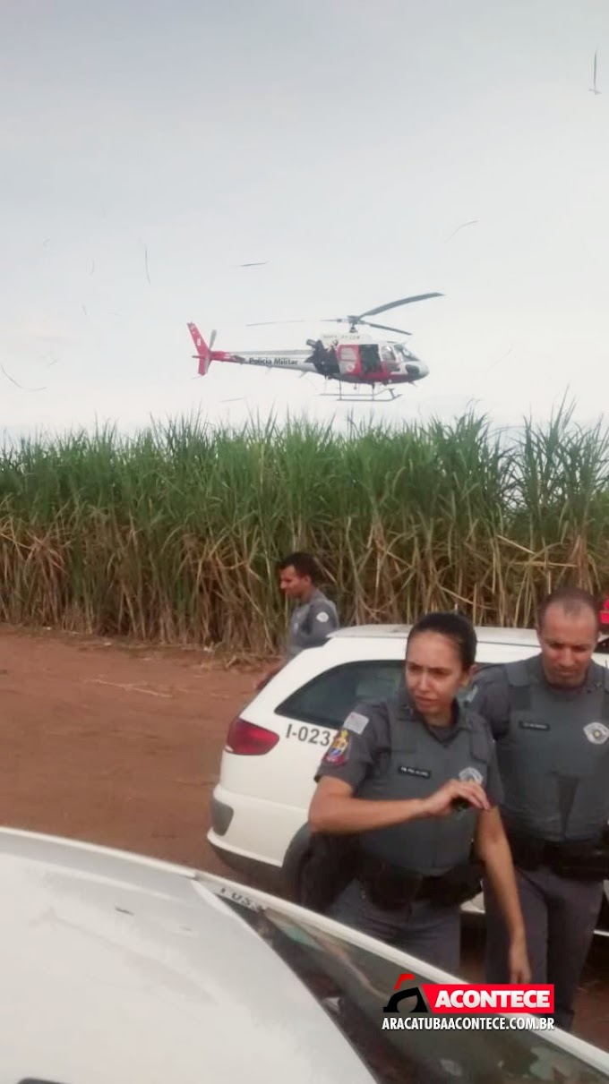 PM prende acusado de assalto em Auriflama, no meio de canavial em Araçatuba