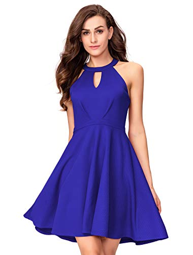 aa3f401e4a24 InsNova Women's Royal Blue Spring Halter Semi Formal Skater Dress for  Cocktail Party 2019