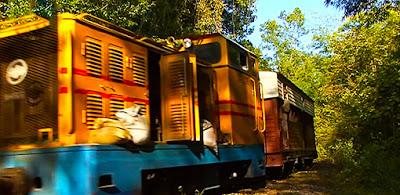 Chinese locomotives