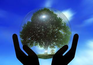 Soluciones eficaces para intentar frenar el cambio climático