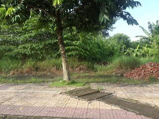 Cho thue mat bang Nga Bay