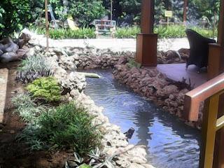 Tukang Kolam Minimalis di Legenda,Jasa Pembuatan Kolam Minimalis di Kota Wisata,Tukang Kolam ikan Hias di Kota Wisata,Tukang Kolam ikan Hias di Cibubur.Tukang Kolam Minimalis Murah dan Profesional di Cibubur