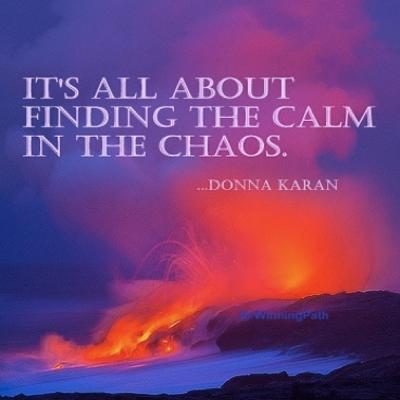 donna karan chaos