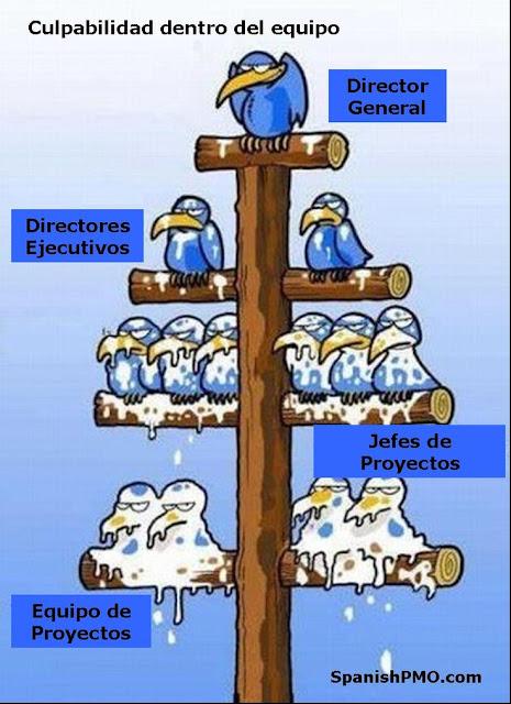 Toda la verdad sobre las empresas