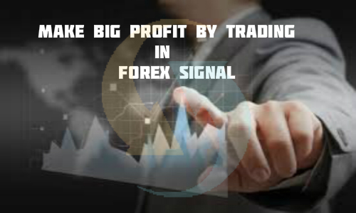 Make Big Profit by Trading In Forex Signal