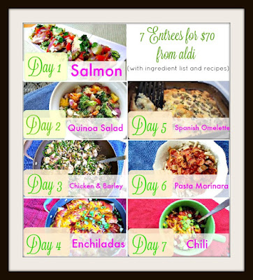 7 Healthy Budget Entrees including Salmon, Quinoa, chicken, Enchiladas, chili, Pasta and Spanish Omelette