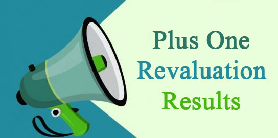 Plus One Revaluation Results 2017
