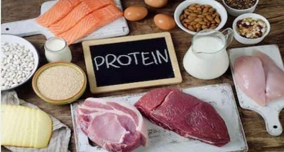 Sources of Protein food