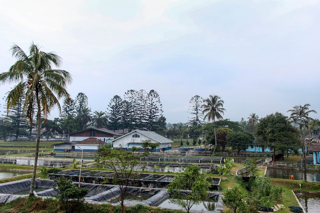 hotel balcony selabintana
