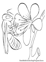 bee insect coloring pages