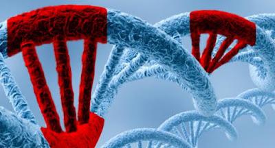 Mutaciones y biologia