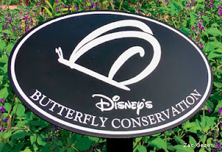 placa natureza disney