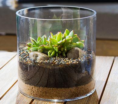 model tanaman hias meja kerja terbaru